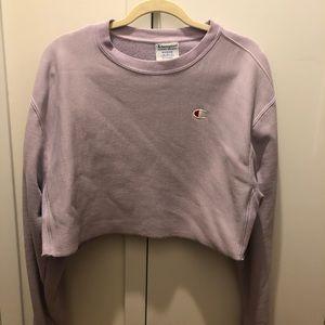 Champions Purple Sweater size L